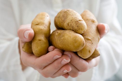 土豆呈椭圆形,有芽眼,皮分红、黄、白或紫色几种颜色,肉质有白色或黄色两种。土豆的淀粉含量较多,营养丰富,口感清脆或粉质,适于炒、炖、烧、炸等,且易为人体消化吸收,因此在欧美等国被认为是第二面包。 土豆味甘、性平、微凉,入脾、胃、大肠经;有和胃调中,健脾利湿,解毒消炎,宽肠通便,降糖降脂,活血消肿,益气强身,美容,抗衰老之功效;主治胃火牙痛、脾虚纳少、大便干结、高血压、高血脂等病症;还可辅助治疗消化不良、习惯性便秘、神疲乏力、慢性胃痛、关节疼痛、皮肤湿疹等症。 一般新鲜土豆中含有