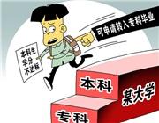 """數據·調查:80.9%受訪者支持大學""""嚴出"""""""