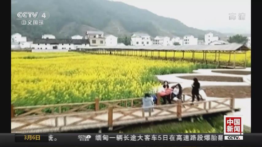中國多地迎來踏青賞花時節