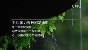 中國加快健全自然資源資産産權制度
