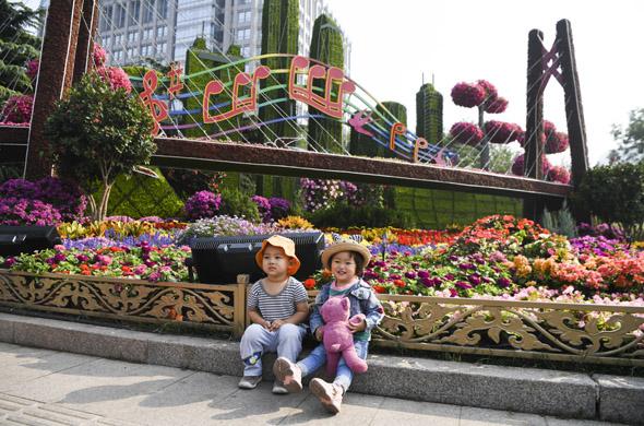 記錄北京街頭的那些花壇景觀