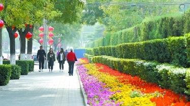 道寬了、路也順了 草橋東路:三季有花四季有綠