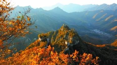 萬山紅遍 秋色絢麗