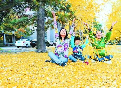 京城為留美景緩掃落葉