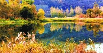 永定河濕地迎來最佳秋色觀賞期