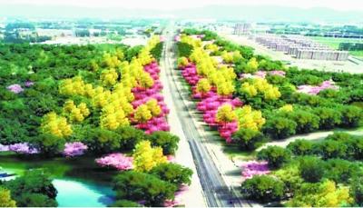 京張高鐵沿線年底添綠超9000畝