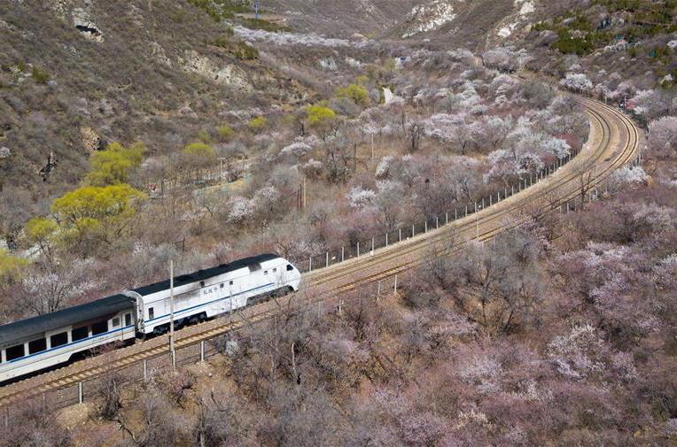 北京:開在春天的列車