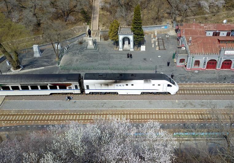 北京:百年火車站旁春花開